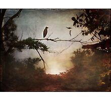 Silent Dawn Photographic Print