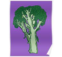 Anatomic Broccoli Poster
