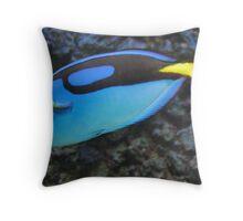 Palette surgeonfish Throw Pillow