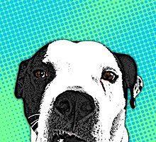 Pop Art Pitbull by Aidan Wells