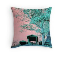 Step into this World Throw Pillow