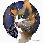 Calico Cat by arline wagner