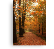 A Tribute to Fall Canvas Print