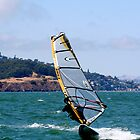Windsurfer  by Peggy Berger