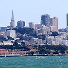 San Francisco Skyline  by Peggy Berger
