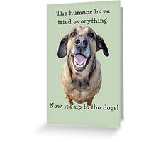 Up to the Dogs Greeting Card