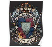 Praise the Sun Poster