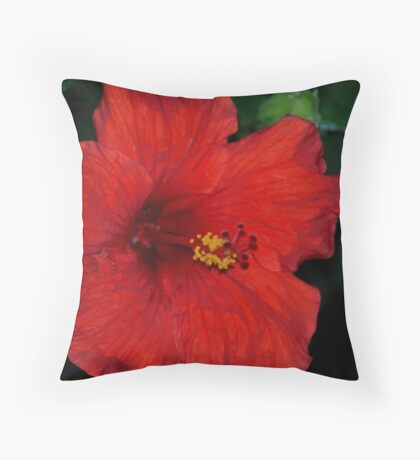 Red, Red, Hibiscus Throw Pillow