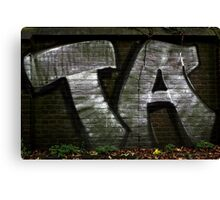 TA Graffiti Art Canvas Print