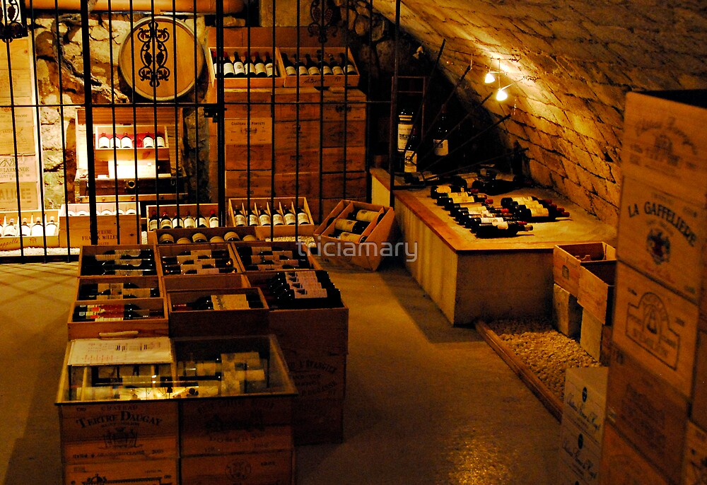 St Emilion Wine Cellar by triciamary