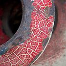 Red Crackle by Tama Blough