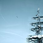 Tall Ship by Shanti Matulewski