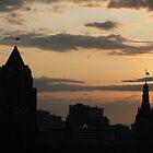 The Skies Awake by D.M. Mucha