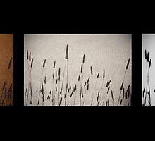 breathing - black by Anthony Mancuso