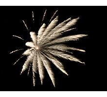 Feathered Fireworks Photographic Print
