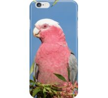 Beauty in the Morning. iPhone Case/Skin