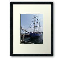 Concordia Framed Print