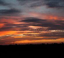 Sunset Orangello by BLAMB