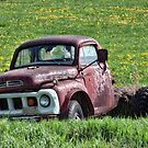 Has Caught Some Rust by Richard Bean