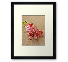 Delicate as death Framed Print