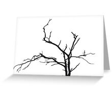 Stark Contrast Greeting Card