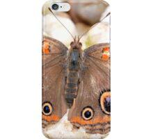 Lone Buckeye iPhone Case/Skin