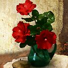 Red Hibiscus in a Green Jug by picketty