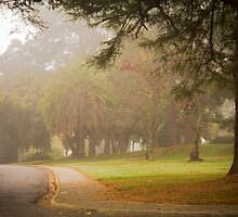 A misty morning at La Trobe Uni at Beechworth by Elana Bailey