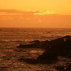Tobacco sunset........ by Lucan  Netley (LDN Photoart)