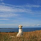 Ditte enjoys the magnificent view by Trine