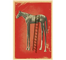 Get Off Your High Horse Photographic Print