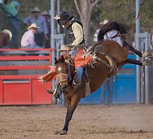 Rodeo action. by trevorb