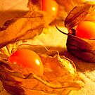 Fruit in a Basket: Physalis Fruit by DonDavisUK