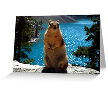 King Of The World Greeting Card