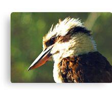 Kookaburra King Canvas Print