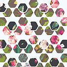 Hexagons In Bloom by THEtoeMas