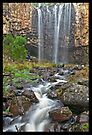 Trentham Water Fall by mspfoto