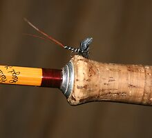 The Hardy Fly rod  by wildfish