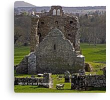 Ireland - Abbey and Sheep Canvas Print