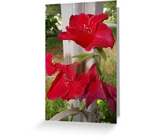 Porch post lilies Greeting Card