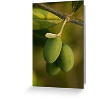 Three Olives Greeting Card