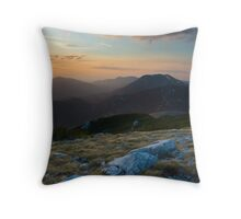 Windy morning Throw Pillow