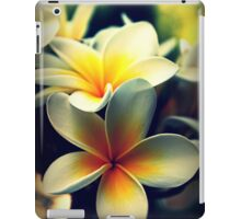 Memories Of A Summer Gone By iPad Case/Skin