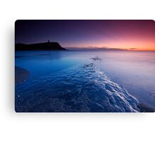 The Blue Planet Canvas Print