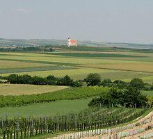 Landscape Austria by snefne