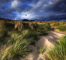 Wales: Blackrock Dunes by Angie Latham