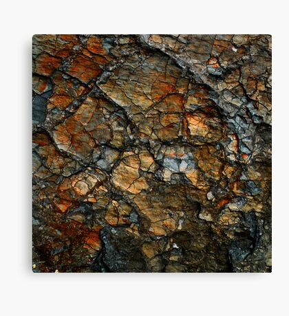 Sedimentary Abstract Canvas Print