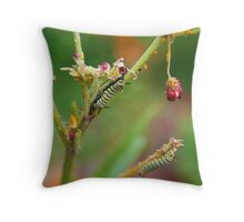 The Very Hungry Caterpillars Throw Pillow