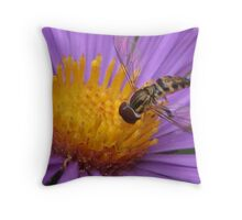 Hoverfly Sampling an Aster Throw Pillow