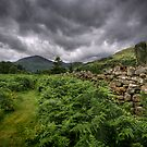 Wales : Green on the Grey by Angie Latham
